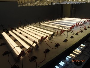 philips_Paragon-Duhal-ledtube_lighting_Ledtube_Gainini_VIetNam